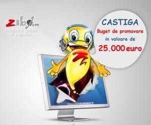 Castiga 25.000 euro buget de promovare pe zibo.ro!